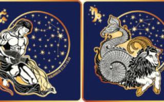 Козерог и Водолей: совместимость, плюсы и минусы союза, будущее