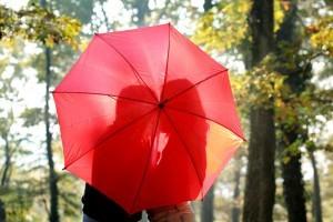 Как привлечь любовь в свою жизнь: психология, фэн-шуй, ритуалы