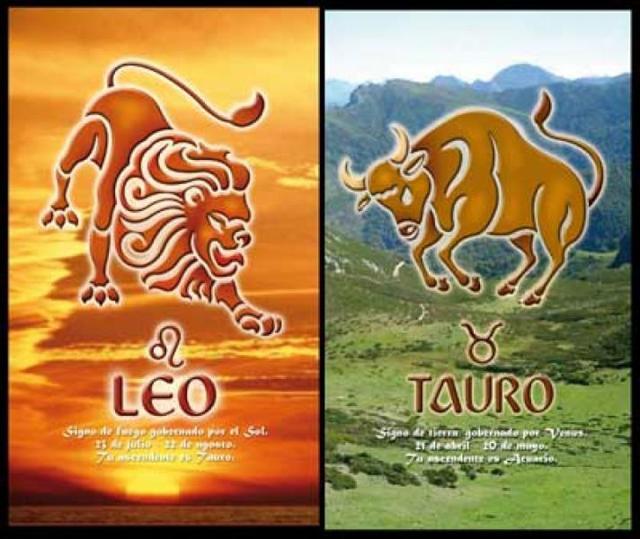 Совместимость экономного Тельца и щедрого Льва: что ждет пару